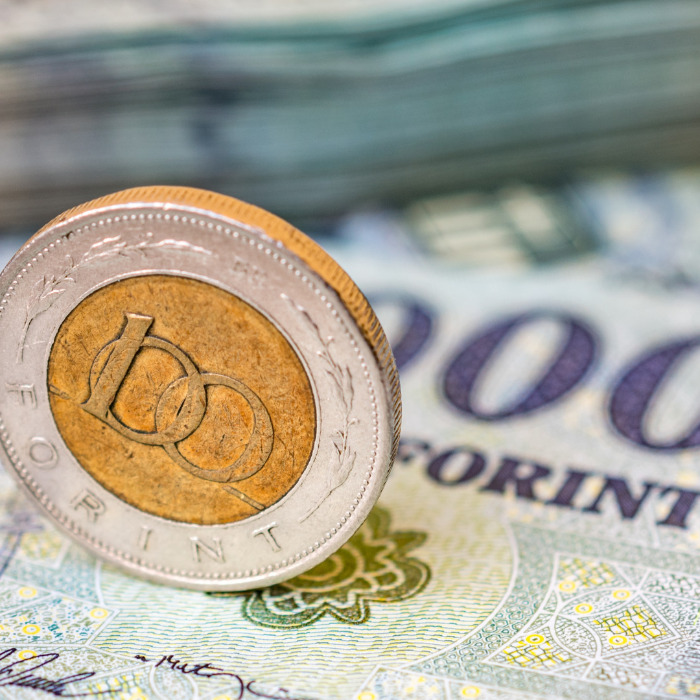 Forint Jumps as Central Bank Sees Retreat in Surplus Cash