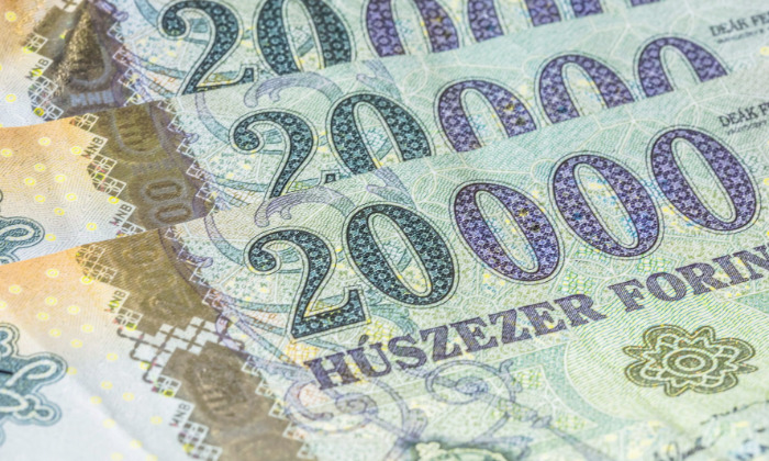Hungary: Wage Growth Shrugs off the Crisis