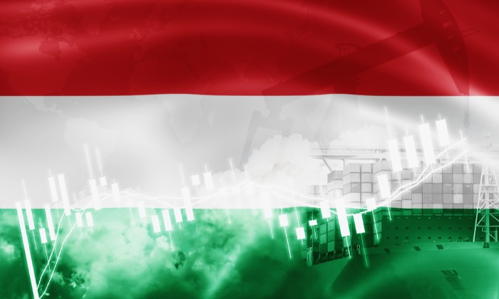 Hungarian Supply Chain Issues Drag Down Industry